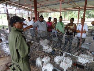Visit to Rabbitry 13