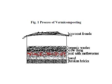 Vermicompost Diagram