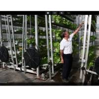 The future lies in Vertical Farming