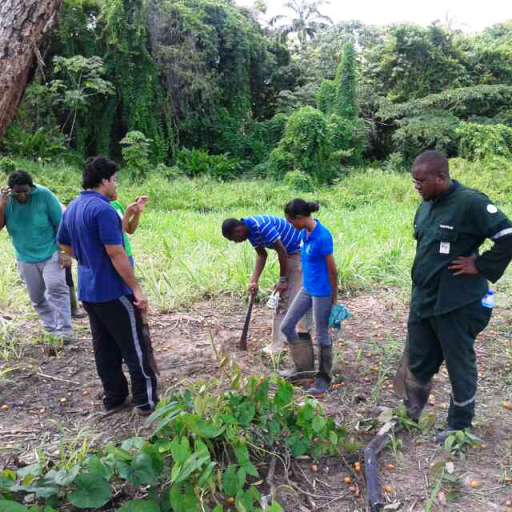 Innovation 4Agriculture, a youth group in the field plans the landscape for thier upcoming farming project - Trinidad and Tobago