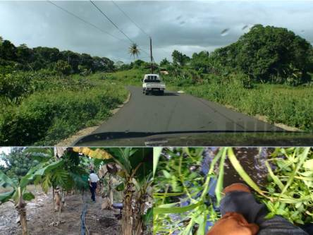 The Journey to Rafi's rural farm in Trinidad and Tobago